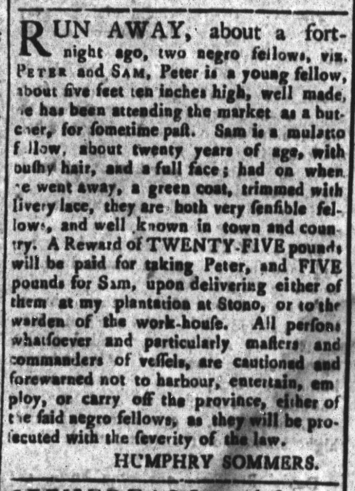 Jun 5 - South-Carolina and American General Gazette Slavery 11