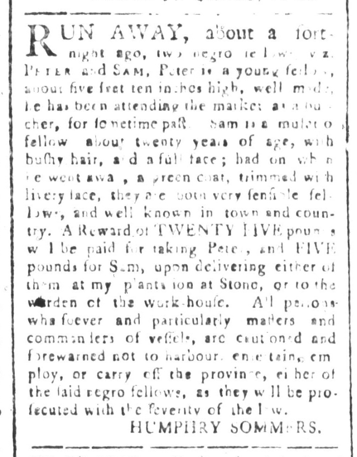 May 22 - South-Carolina and American General Gazette Slavery 2