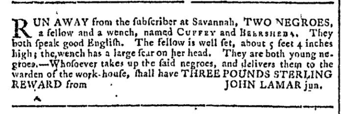 Aug 19 - Georgia Gazette Slavery 1