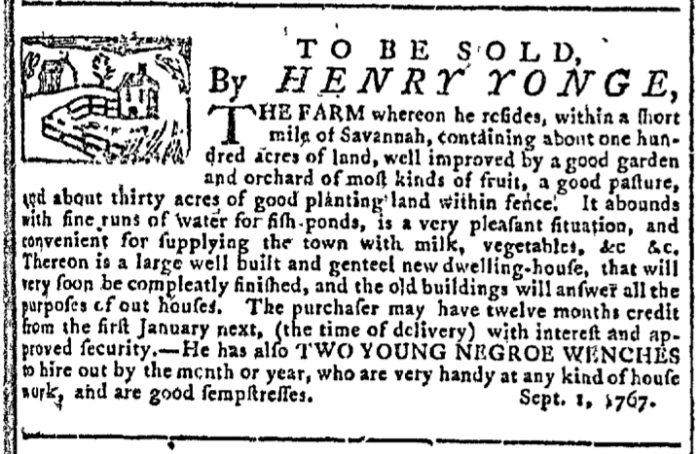Sep 2 - Georgia Gazette Slavery 1