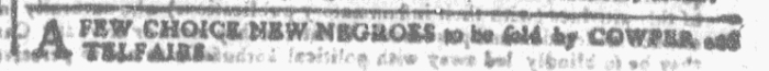 Nov 11 - Georgia Gazette Slavery 3