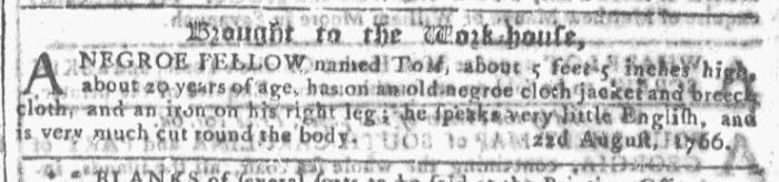 Nov 25 - Georgia Gazette Slavery 9