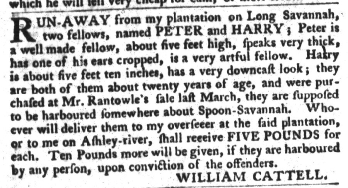 Jan 26 - South-Carolina Gazette and Country Journal Slavery 11