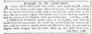 May 25 - Georgia Gazette Slavery 3