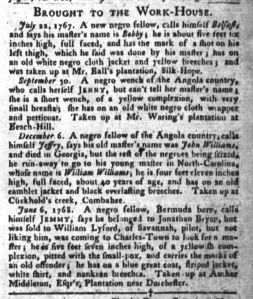 Jun 14 - South-Carolina Gazette and Country Journal Supplement Slavery 3