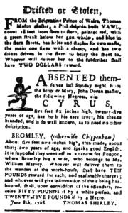 Jul 18 - South-Carolina Gazette Postscript Slavery 5