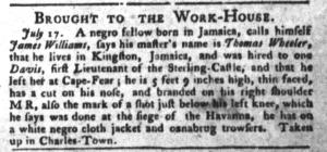 Jul 19 - South-Carolina Gazette and Country Journal Slavery 6