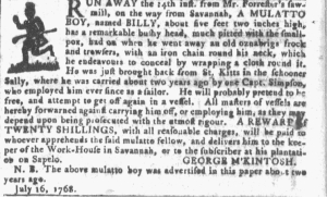 Jul 20 - Georgia Gazette Slavery 1