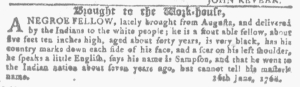 Jul 27 - Georgia Gazette Slavery 13