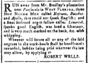 Jul 29 - South Carolina and American General Gazette Slavery 4