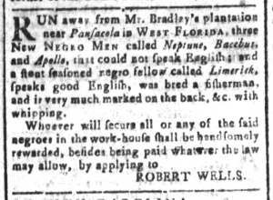 Aug 19 - South-Carolina and American General Gazette Slavery 6