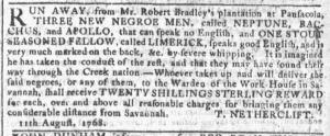 Aug 31 - Georgia Gazette Slavery 7