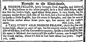 Sep 7 - Georgia Gazette Slavery 8